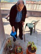 Loreak, barazkiak eta fruta arbolak gure terrazan