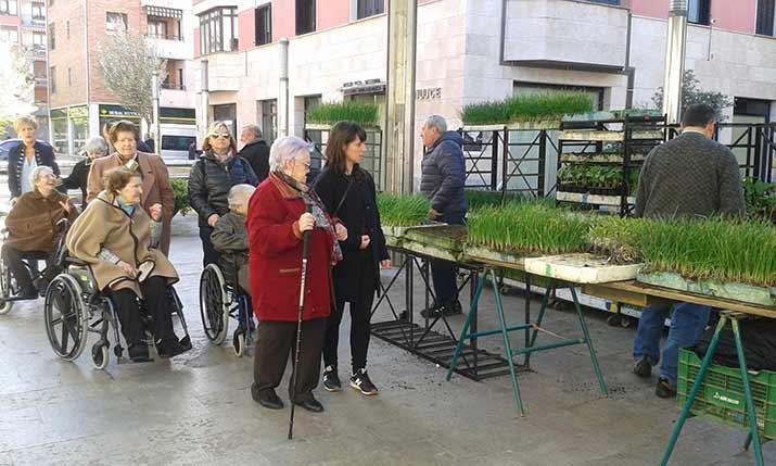 Residentes de la Residencia de personas mayores Santiago visitan el mercado de Villabona