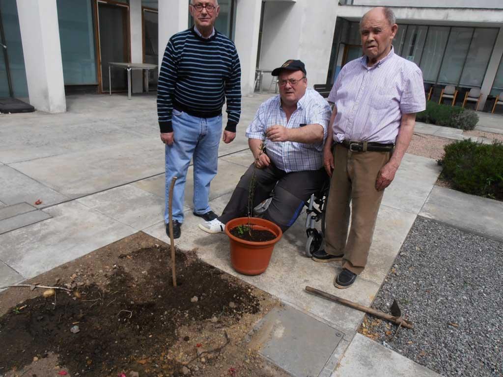 Huertos en la Residencia de personas mayores Barandiaran de Durango